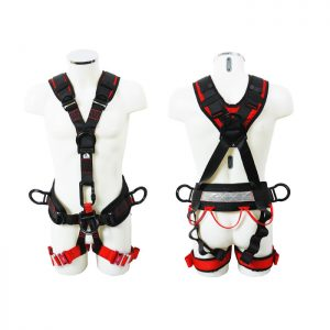 Access Pro Harness ABPRO